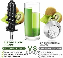 Cold Press Juicer Slow Masticating Juice Extractor Quiet Motor Vegetables Fruit