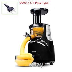 NUC Galaxy GJ-140S Silent Juicer Slow Fruit Juice Extractor 220V Ice cream Screw