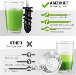Slow Masticating Juicer, AMZCHEF Slow Juicer Extractor Professional Machine